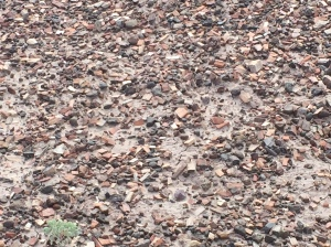 That's not gravel. Those are petrified wood chips.